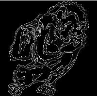 2307. Тигр