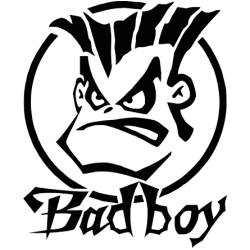 2309. Плохой мальчик  BAD BOY