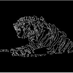 2324. Тигр