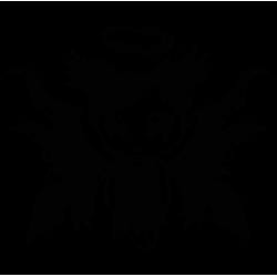 2339. Ангелочек