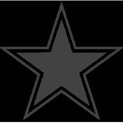 2403. Звезда