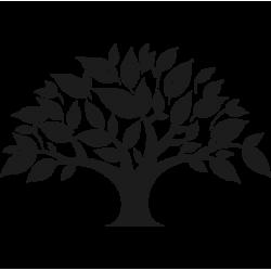 2419. Дерево