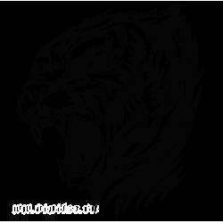 2480. Тигр