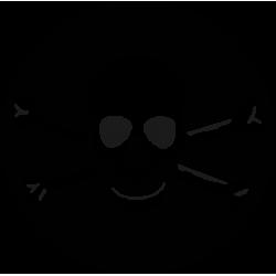 2511. Пиратская символика