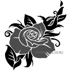 2512. Роза