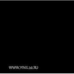 2543. Кот Сильвестр