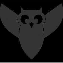 2573. Силуэт совы