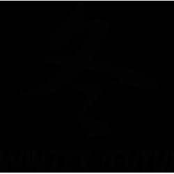 2596. Иероглиф  Зима