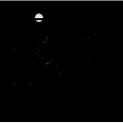 2598. Пермь Рулит