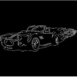 2646. Гоночная машина