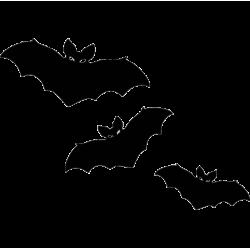 2683. Летучие мыши