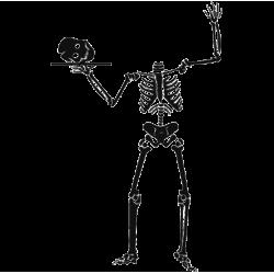 2690. Скелет