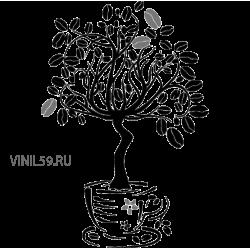 2855. Дерево кофейное