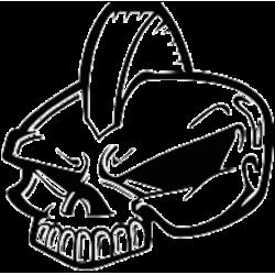 2883. Череп с ирокезом