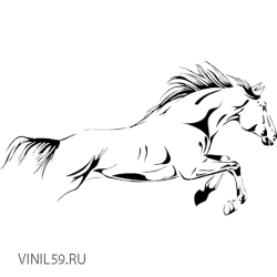 2904. Лошадь