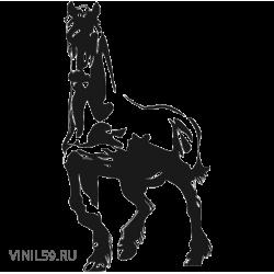 2906. Лошадь