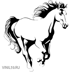 2911. Лошадь