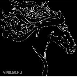2912. Лошадь