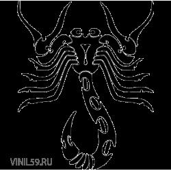 2954. Скорпион