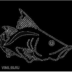 2982. Рыба
