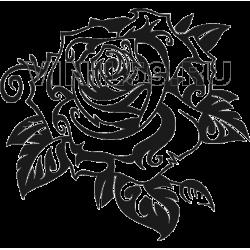 3148. Роза