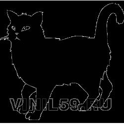 3158. Черный кот