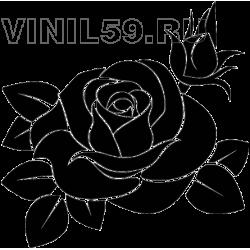 3175. Роза