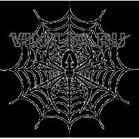 3261. Паук на паутине