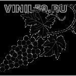 3303. Кисть винограда