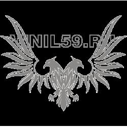 3384. Феникс