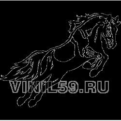 3579. Лошадь в прыжке