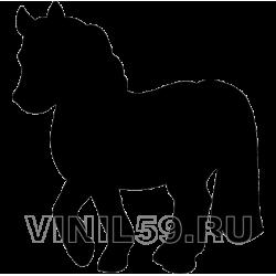 3647. Пони