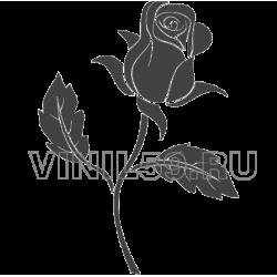 3834. Роза