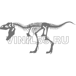 3900. Скелет динозавра