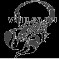 3923. Скорпион
