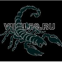 4026. Скорпион