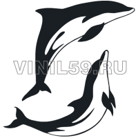 4227. Дельфины