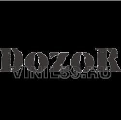 4333. DOZOR, ночная командная  игра