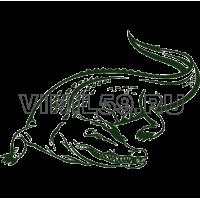 4377. Крокодил