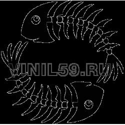 4393. Скелет рыб