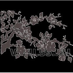 4597. Цветущая ветка сакуры