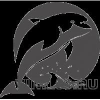 4606. Дельфин