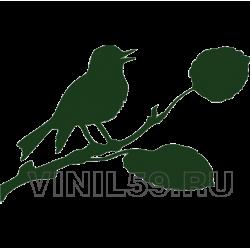 4629. Птица на ветке