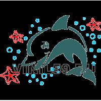 4632. Дельфин