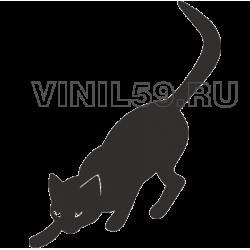4645. Кошка