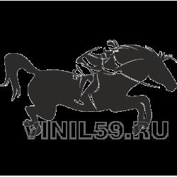 4662. Конный спорт