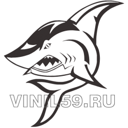 4701. Акула