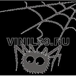 4715. Паук на паутине