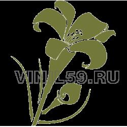 4741. Цветок Лилии