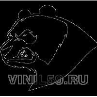 4755. Панда
